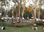 Riverboats-Music-Festival, Echuca Moama