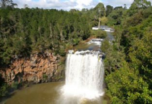 Dangar Falls near Dorrigo