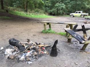 Campsite vandalism