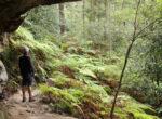 NSW national park walking tracks