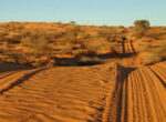 Simpson desert and satellite phones