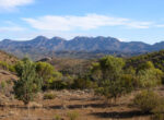 Flinders Ranges for grey nomads
