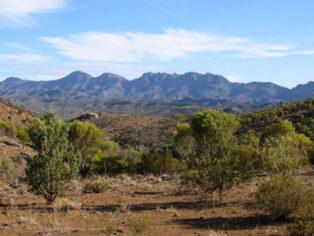 Flinders Ranges for grey nomads