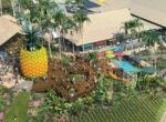 Big Pineapple plans
