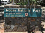 national parks dog ban