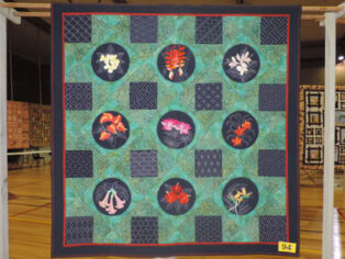 airing of the quilts, grey nomads, jobs, mossman