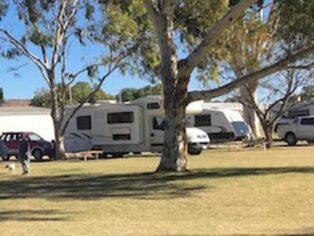 Alice springs showground camping