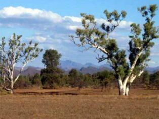 Flinders Ranges is great for grey nomads