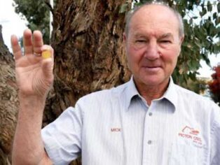 Grey nomads finds rare coin at campsite near Leonora