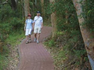 Couples go bushwalking