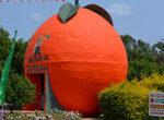 Orange-Festival,-Gayndah