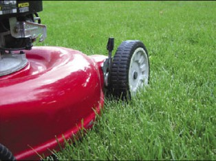 Greynomad misses mowing the lawn