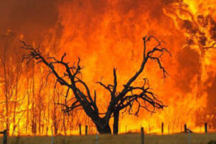 Bushfire risk raised for grey nomads in remote country