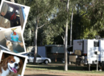 Heritage Caravan Park in Alice Springs welcomes dogs