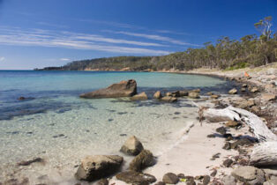 Maria Island draws grey nomads off mainland Tasmania