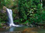 Curtis Falls on Tamborine Plateau