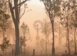 dust storm,