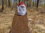 Santa on Outback highways