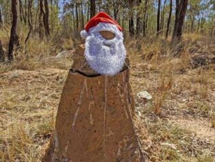 Santa on Outback highways