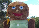 Scarecrows are socially distanced for grey nomads