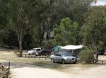 Campsite in Girraween National Park