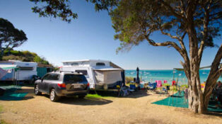Camping will now be allowed at Mornington Peninsula
