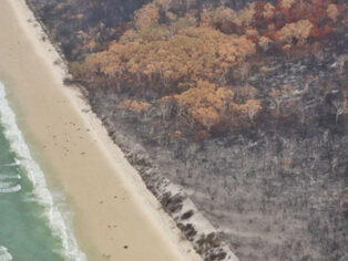 Fraser island bushfire