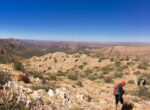 tracks like the Larapinta Trail